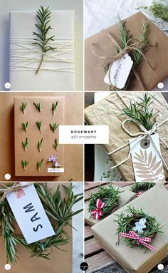 24 ways to decorate with rosemary this holiday   Rosemary gift wrapping
