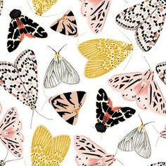 Moth's beauty custom fabric by jenniejoyce for sale on Spoonflower Floral Illustrations, Graphic Illustration, Textile Design, Fabric Design, Types Of Moths, Beautiful Bugs, Insect Art, Bullet Journal Art, Surface Pattern Design
