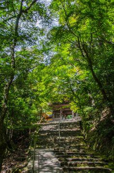 Gate to Jingo-ji Temple, Japan | by Yoshiyuki Miyake on 500px