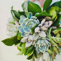 Stunning succulent bouquet by Arrangements. Viceroy Palm Springs wedding by Celebrations of Joy.