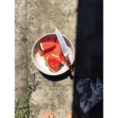 to help one understand the depth of joy that is watermelon in Hungary: this beast took us a week to finish (a family that can polish off a whole watermelon a day in the U.S.). It's red is so intense you need solar eclipse glasses to look at its core and the flavor, oh the flavor. #postcardsfromhungary #solareclipse Solar Eclipse Glasses, Hungary, Postcards, Watermelon, Beast, Core, It Is Finished, Polish, Canning