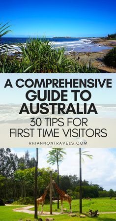 A Comprehensive Guide to Australia: 40 Tips For First Time Visitors