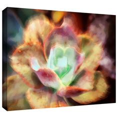 'Anapo Dawn' by Dean Uhlinger Photographic Print Gallery-Wrapped on Canvas