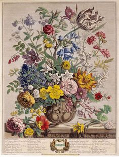 "PIETER CASTEELS ""TWELVE MONTHS OF FLOWERS"" 1751"