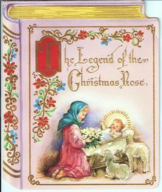 The Legend of the Christmas Rose.
