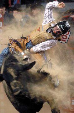 Matagorda County Fair and Livestock Association and PRCA Rodeo -- Bay City, TX