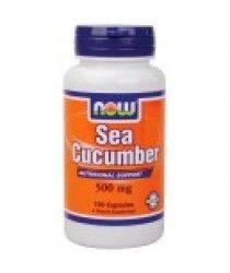 sea cucumbers digestive system | sea cucumbers sinus healing | sea