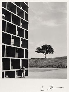 Lucien Hervé, béton et lumière : lorsque l'architecture devient abstraction. Jusqu'au 25 février à la galerie Camera Obscura, Paris.