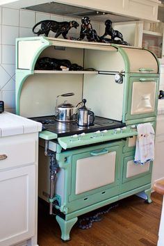 What a gorgeous enameled cast iron stove/oven.