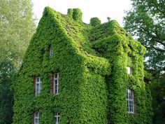 as long as I don't have to use hedge trimmers to maintain this, I'm moving in.