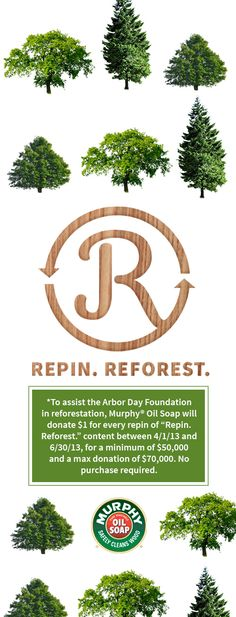 Between 4/1/13 and 6/30/13, Murphy Oil Soap® donated $1 to the Arbor Day Foundation for every re-pin of this image. Although the promotion is over, we encourage our followers to continue re-pinning!  #MurphyOilSoap #RepinReforest