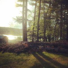 Sunrise in Mass. #brimfield #BirchLaneTakeover  – Christiane Lemieux