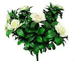 """18"""" Artificial Cream Azaleas 5ct. UV Rated. Will Not Fade. 2yr Manufacturer Warranty Included >>> Visit the image link more details."""