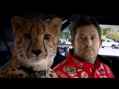 Tony Stewart Cheetah Commercial. Link doesn't work very well. Might have to search.