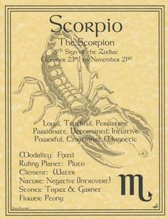 Scorpio Poster Parchment Page Book of Shadows