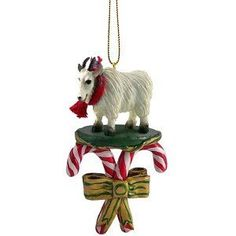 I want this for Christmas!  Found on Amazon.com.  Under goat ornament.  This would be such a nice addition to all my other goats on the Christmas tree.  Hint Hint!