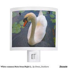 White common Mute Swan Night Light