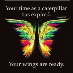 Wings are ready, time as a caterpillar has expired Quotes About Butterflies, Butterfly Quotes, Courage Quotes, Quotes About Strength, True Quotes, Daily Quotes, Motivational Quotes, Change Quotes Job, Quotes To Live By