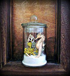 Air Plant Lichen Terrarium / Seahorse & Sea Shell by DoodleBirdie, $24.00