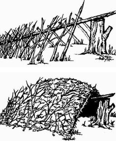 Balsam boughs shelter - Google Search - debris hut