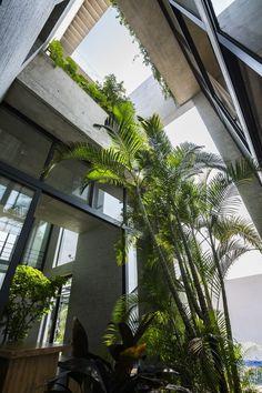 Stone + Green Binh House by Vo Trong Nghia Architects Residential architecture - Vietnam Concrete Facade, Concrete Houses, Patio Design, House Design, Loft Design, Exterior Design, Vietnam, Architecture Résidentielle, Futuristic Architecture