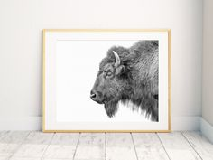 Bison Print, Black And White, Nursery Print, Animal Wall Art, Bison Print, Nursery Printable Art by mangomotel on Etsy https://www.etsy.com/listing/458359730/bison-print-black-and-white-nursery