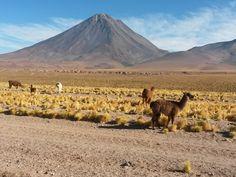 Deserto do Atacama uns dos lugares mais incríveis que já conheci. Com cerca de 1000 km de extensão, é considerado o deserto mais alto e mais árido do mundo. As temperaturas podem variar entre 0ºC à noite a 40 ºC durante o dia.