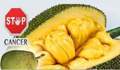 6 Amazing Health Benefits of Jackfruit, A Powerful Cancer Killer! - Right Home Remedies Natural Health Remedies, Home Remedies, Clogged Arteries, Clear Arteries, Signs Of Lung Cancer, Lemon Drink, Liver Disease, Fatty Liver, Organic Coconut Oil