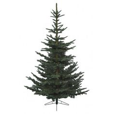 Nobilis Fir 10ft (300cm) When we first came across the Nobilis fir Christmas Tree by Kaemingk, we stood back in awe. This is truly the most realistic looking Artificial Christmas tree we have ever seen. The Nobilis Fir is a classic Christmas tree, and is available this year in 7ft, 8ft, 10ft and 12ft heights.