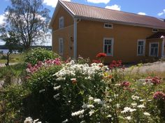 Talon puutarhassa