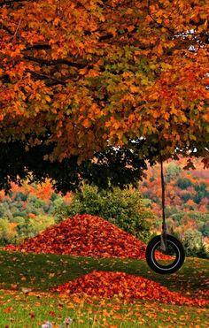Reasons Four Loving Seasons