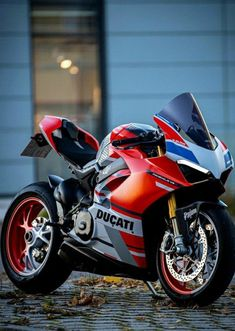 Cafe Racer Motorcycle, Cruiser Motorcycle, Moto Car, Ducati Motorcycles, Ducati Monster, Sportbikes, Hot Bikes, Pedal Cars, Super Cars