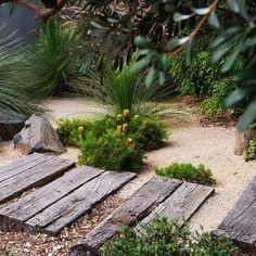 Brilliant garden path and walkways design ideas 106 bush garden, dry garden, grav Bush Garden, Dry Garden, Garden Paths, Australian Garden Design, Australian Native Garden, Design Patio, Path Design, Coastal Gardens, Beach Gardens