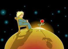 El principito y su rosa.... su rosa que era como cualquier rosa, pero que para él era especial, porque era SU rosa.