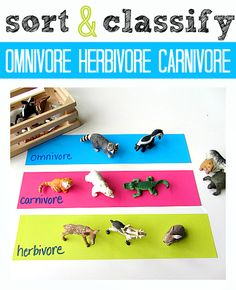 You could use any animal toys you have - so simple but great science lesson too!  From No Time for Flash Cards.