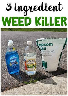 3 Ingredient Weed Killer - Great for sidewalk cracks! How To Kill Grass, Killing Weeds, Weed Killer Homemade, Weed Control, Garden Pests, Garden Care, Lawn Care, Lawn And Garden, Backyard Landscaping