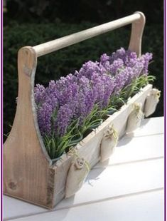 Lavender- lovely way to display plants & sachets! Lavender Cottage, Lavender Garden, Lavender Blue, Lavender Fields, Lavender Flowers, Purple Flowers, Planting Lavender, French Lavender, Lavender Sachets