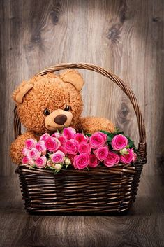 Happy Teddy Day Images, Teddy Bear Images, Teddy Bear Day, Teddy Bear Pictures, Cute Teddy Bears, Bear Pics, First Birthday Party Themes, Bear Wallpaper, Tatty Teddy