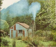 1960's deer cullers hut, Arawhata River, South Westland