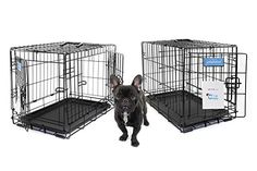 Petphabet THE BEST Double-Door Collapsible Pet Dog Crate with Divider Panel and Plastic Pan 42 by 28 by 30 Inches for Large Dogs 71 to 90 Pounds https://dogcratesandkennelsreviews.info/petphabet-the-best-double-door-collapsible-pet-dog-crate-with-divider-panel-and-plastic-pan-42-by-28-by-30-inches-for-large-dogs-71-to-90-pounds/