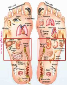 Pin-Bild | Health and fitness | Pinterest | Reflexology, Health and Health fitness