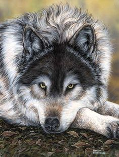 """""""Watchful Waiting"""" !!!!  I know this is a Portrait, However It's Stunning and I Love IT . . ."""