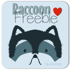 Raccoon Plotter-Datei   /  Freebie