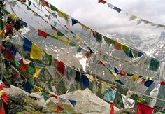 the power of prayer...and prayer flags. tibet is awesome.