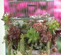 Gartendekoration selber machen. Wenn Sie Ihre Gartendekoration selber machen möchten, haben wir noch eine coole Ideensammlung für Sie zusammengestellt. Die