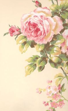 vintage rose wallpaper! Wish I could find this!!!!