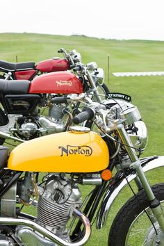 Nortons in line #motorcycle #federation