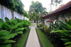 plants along the walls Tropical Garden Design, Tropical Landscaping, Garden Landscape Design, Modern Landscaping, Front Yard Landscaping, Jungle Gardens, Farm Gardens, Outdoor Gardens, Bali Garden