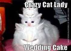 Image result for funny wedding cakes