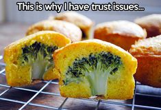 50 Random Hilarious Pictures About Food